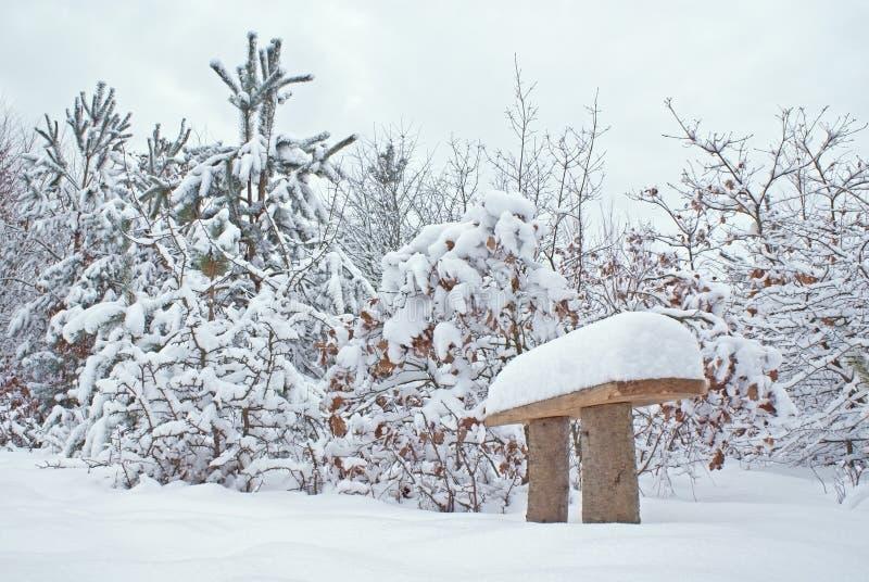 Banco de madeira coberto com a neve na floresta no inverno fotos de stock