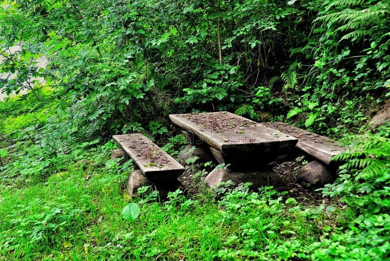 Banco de madeira e tabela nas madeiras no rio da montanha fotografia de stock