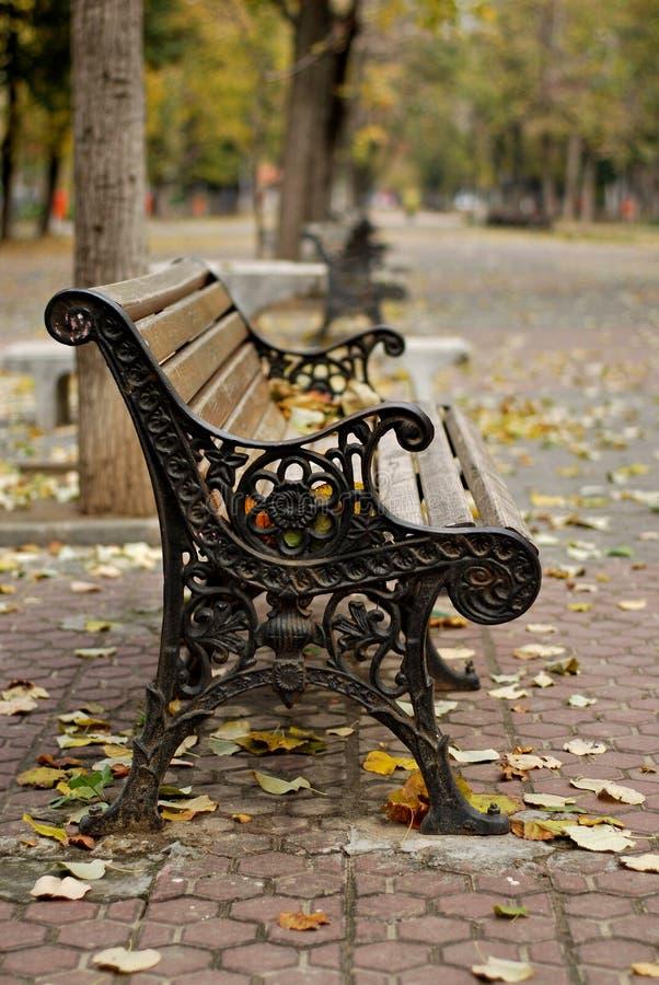 Banco de madeira em um dia do outono imagem de stock