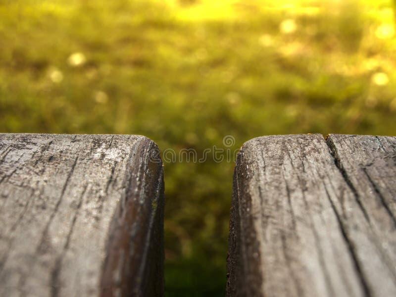 banco de madeira em um fundo verde obscuro fotografia de stock