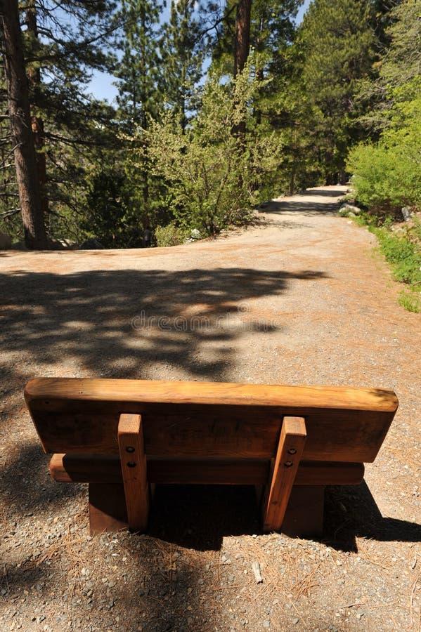 Banco de madeira em um trajeto de caminhada na floresta fotografia de stock royalty free