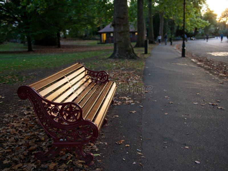 Banco de madeira no crepúsculo no parque de Battersea em Londres fotografia de stock royalty free