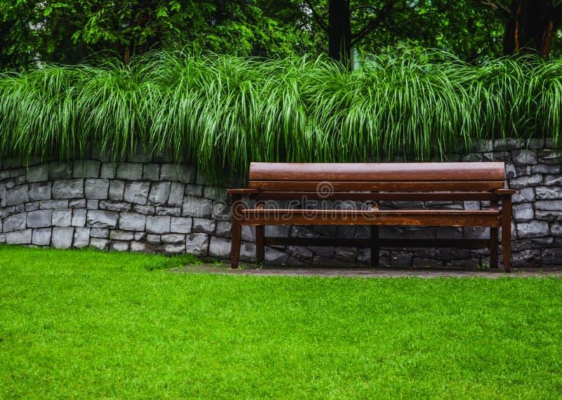 Banco de madeira no parque fotografia de stock royalty free