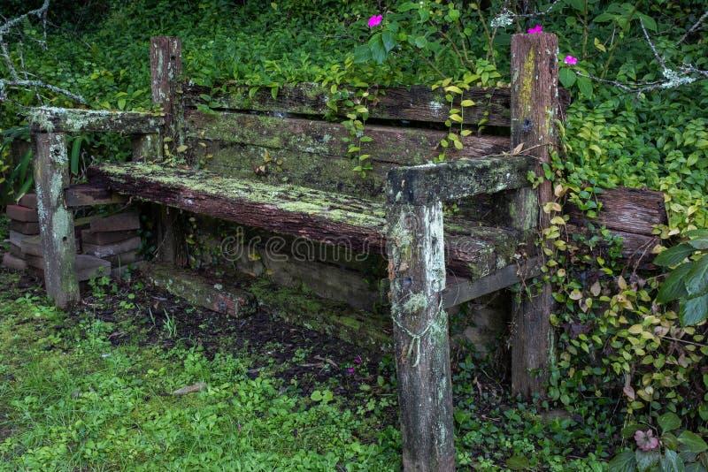 Banco de madeira rústico imagens de stock royalty free
