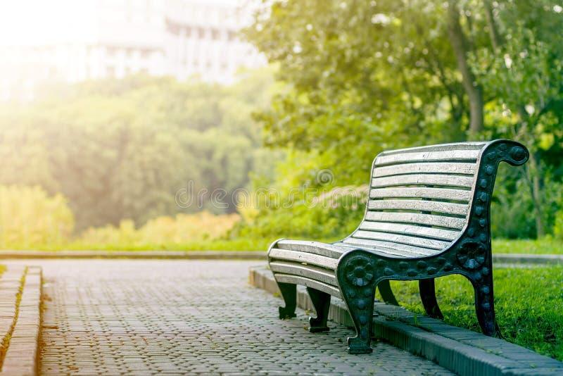 Banco de madeira vazio confortável na sombra da árvore verde no dia de verão brilhante no fundo borrado da folha das árvores do p foto de stock royalty free