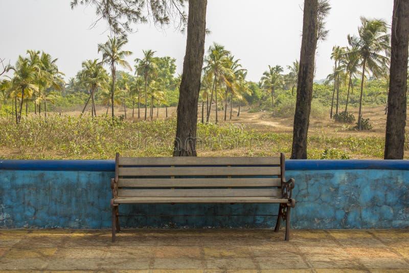 Banco de madeira velho contra a parede azul e as palmeiras verdes fotografia de stock