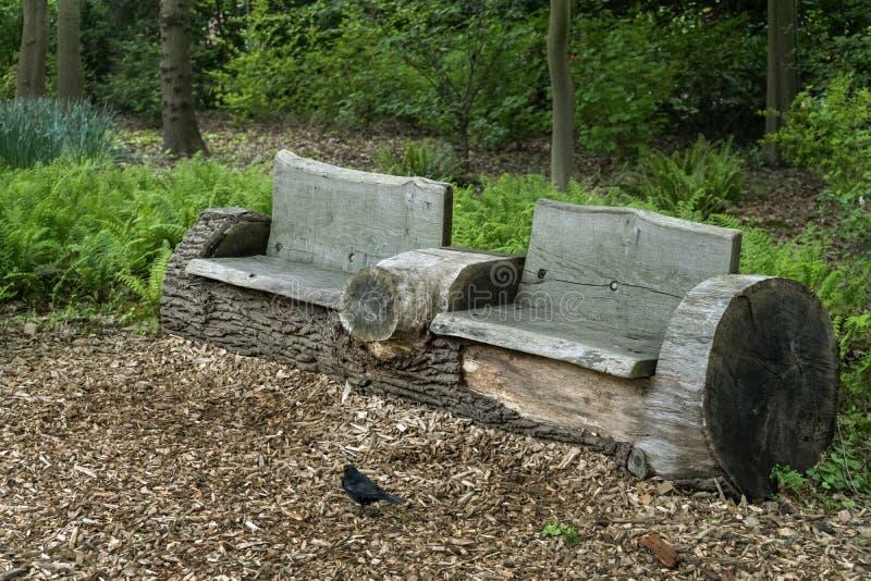 Banco de madeira velho feito do tronco de árvore e do melro na frente do jardim, parque imagens de stock royalty free