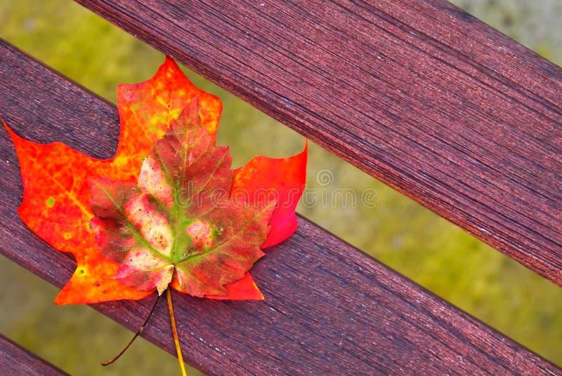 Banco de madera con el pequeño ramo de hojas de arce del otoño fotografía de archivo