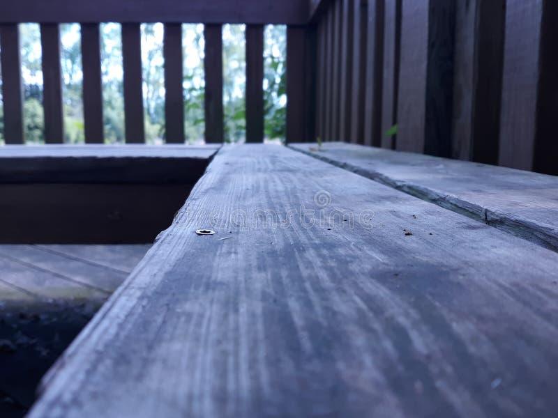 Banco de madera del tablón rodeado por naturaleza imagen de archivo libre de regalías