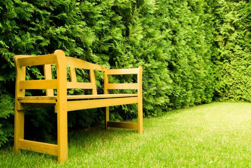 Banco de madera en un césped en un jardín verde fotos de archivo libres de regalías