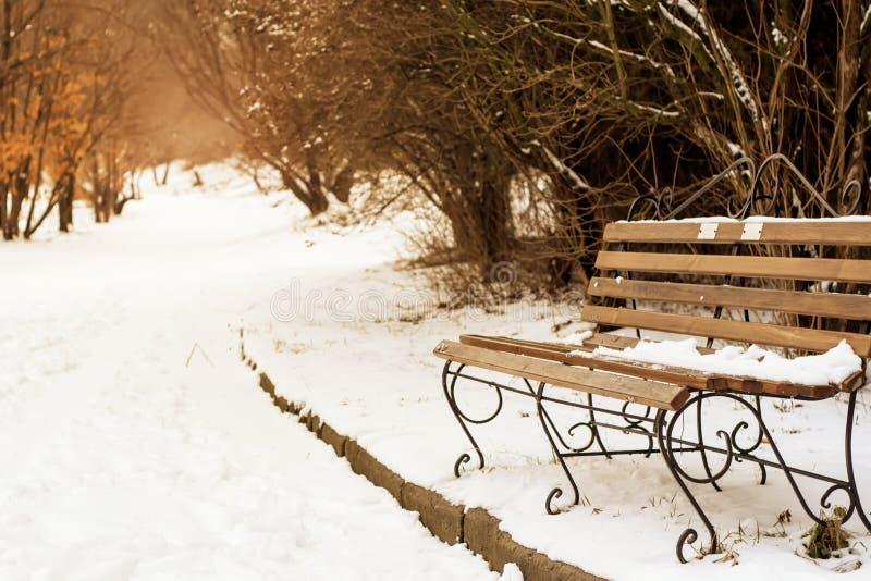 Banco de madera que se coloca en la nieve para el resto en el bosque de la montaña con una hermosa vista Bosque del invierno en l imágenes de archivo libres de regalías