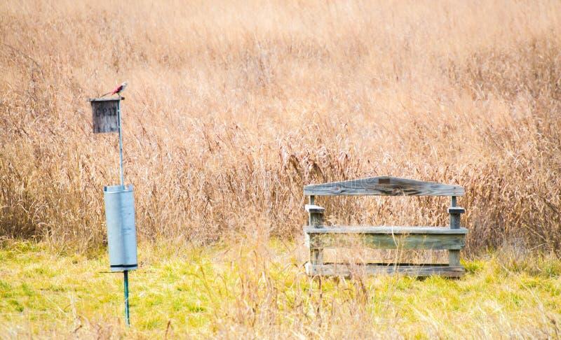 Banco de madera resistido con el pájaro rojo en alimentador del pájaro en un campo imagen de archivo libre de regalías