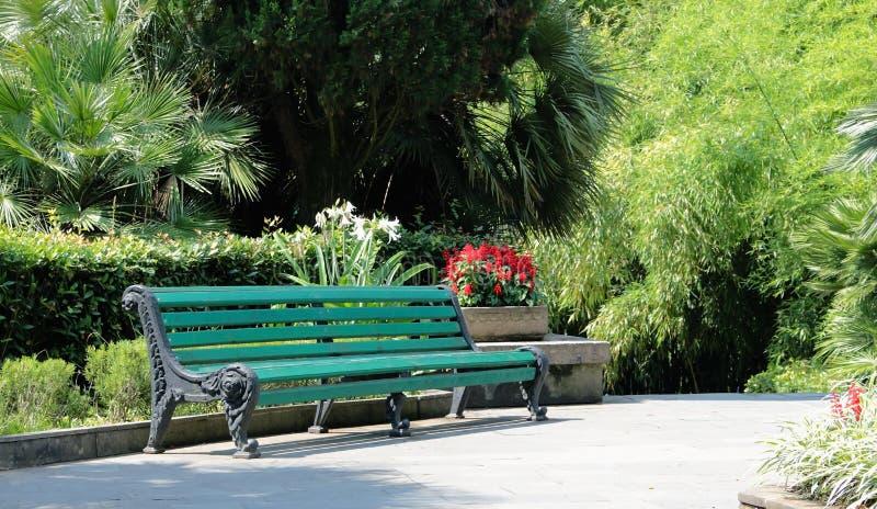 Banco De Madera Verde En El Parque Imagen de archivo - Imagen de ...
