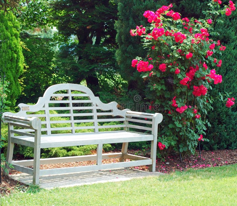 Banco de madera y rosas rojas imagen de archivo libre de regalías