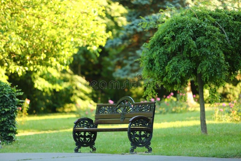 Banco de parque com fundo verde da natureza fotos de stock