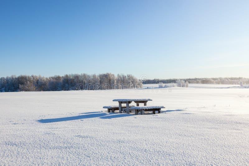 Banco de parque do inverno fotos de stock