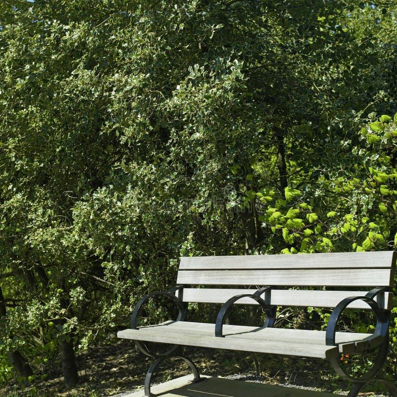 Banco de parque no outono imagens de stock