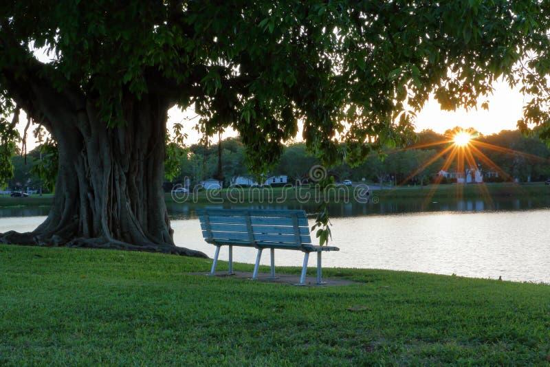 Banco de parque vacío en la puesta del sol imagen de archivo