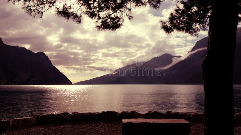 Banco de piedra vacío por el lago debajo de un árbol de pino Hermosa vista de las siluetas de la superficie y de la montaña del a imagen de archivo
