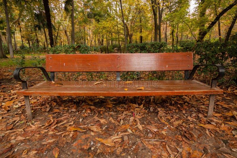 Banco de sentarse en el parque foto de archivo imagen de color escena 61962440 - Banco para sentarse ...