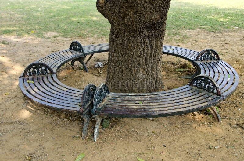 Banco decorativo do círculo do metal em torno da árvore em Ásia fotos de stock