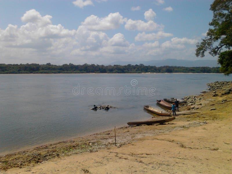 banco del caura del río, a través de la selva en el estado de Bolivar, Venezuela foto de archivo libre de regalías