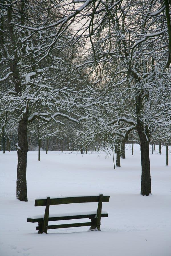Banco di inverno fotografie stock libere da diritti