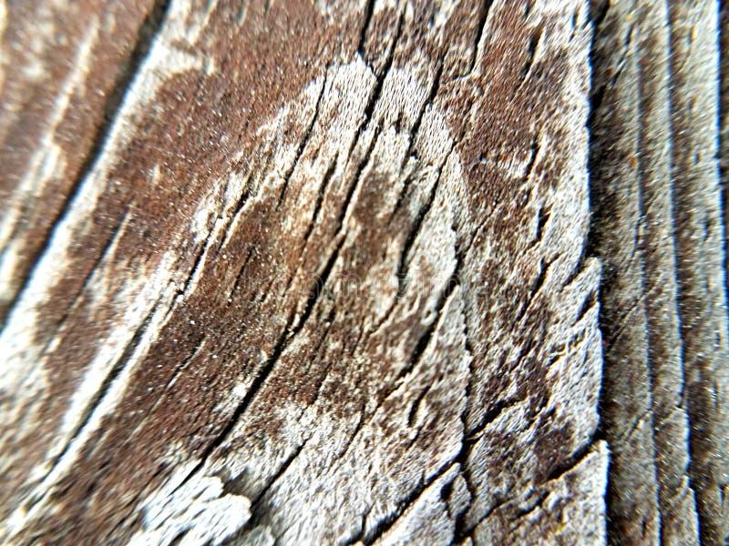 Banco di legno immagine stock