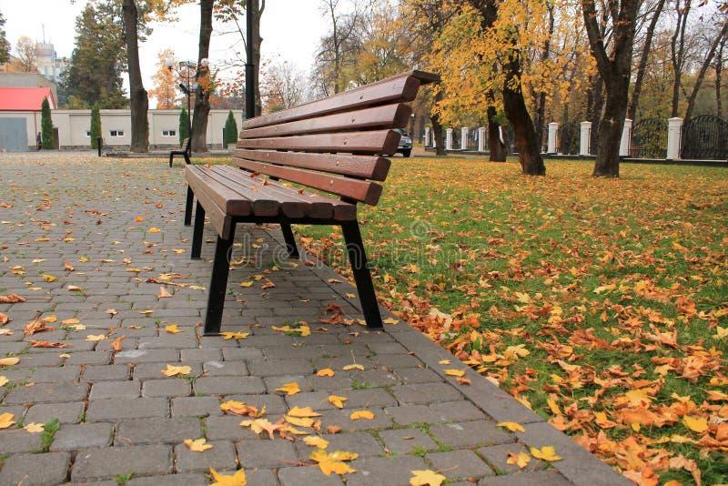 Banco di legno nel parco della città su fondo di prato inglese e di permesso di autunno fotografia stock libera da diritti