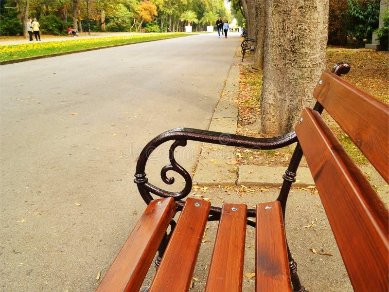 Banco di legno nel vicolo del parco della città un giorno caldo di autunno immagini stock