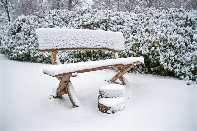 Banco di legno di Snowy nella foresta fotografie stock libere da diritti