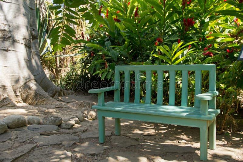 Banco di legno verde in un parco fotografia stock