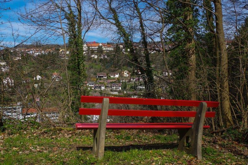 Banco di parco rosso di legno sotto gli alberi nella foresta fotografia stock
