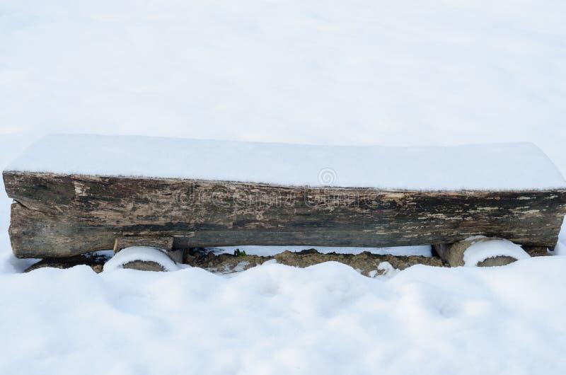 Banco do tronco do parque e de árvore vazio durante a estação do inverno fotos de stock