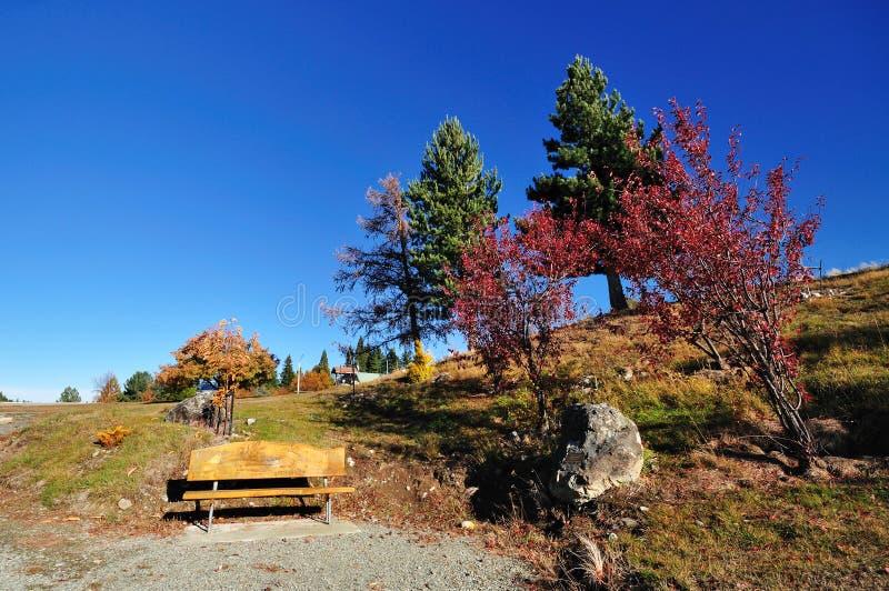 Banco e árvore do outono fotografia de stock royalty free