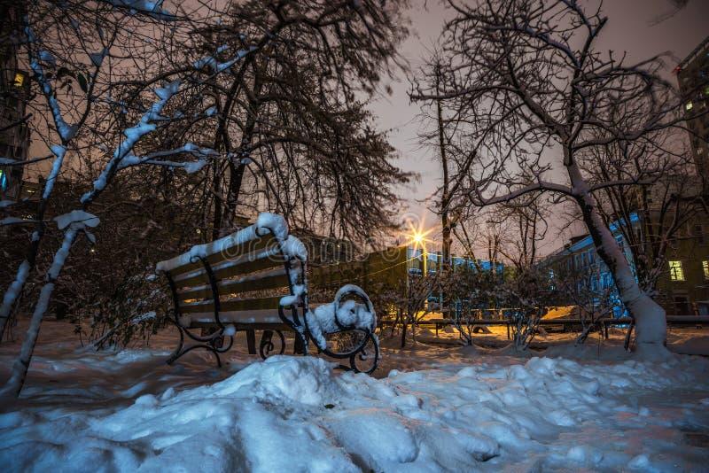 Banco e árvores na neve na noite imagem de stock royalty free