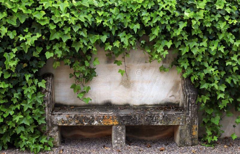 Banco ed edera di pietra sulla vecchia parete rurale della casa, Provenza, Francia immagine stock