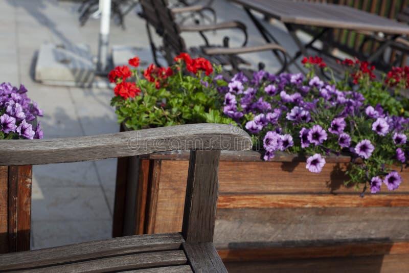 Banco en el jardín con las flores imagen de archivo libre de regalías
