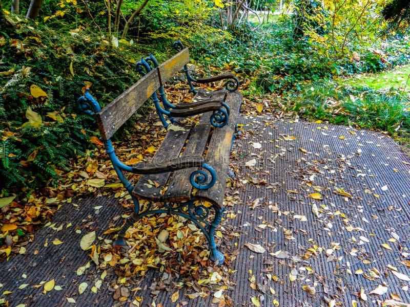 Banco en el parque con la porción de hojas de otoño foto de archivo