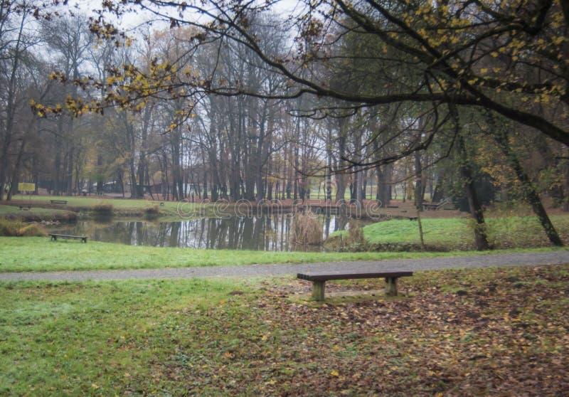 Banco en el parque con el pequeño lago durante caída foto de archivo