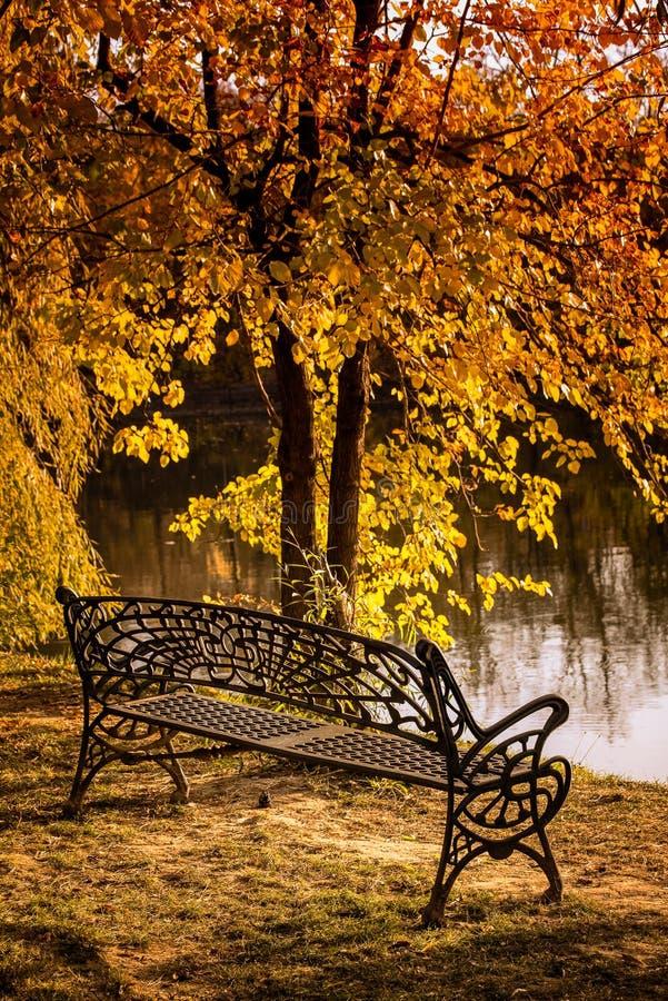 Banco en el parque de Herastrau en el tiempo del otoño, humor romántico, Bucarest Rumania imagen de archivo libre de regalías