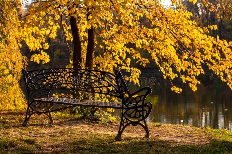 Banco en el parque de Herastrau en el tiempo del otoño, humor romántico, Bucarest Rumania fotografía de archivo libre de regalías