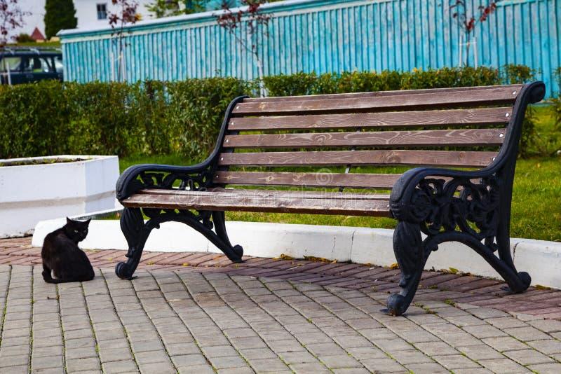 Banco en el parque y un gato negro foto de archivo libre de regalías