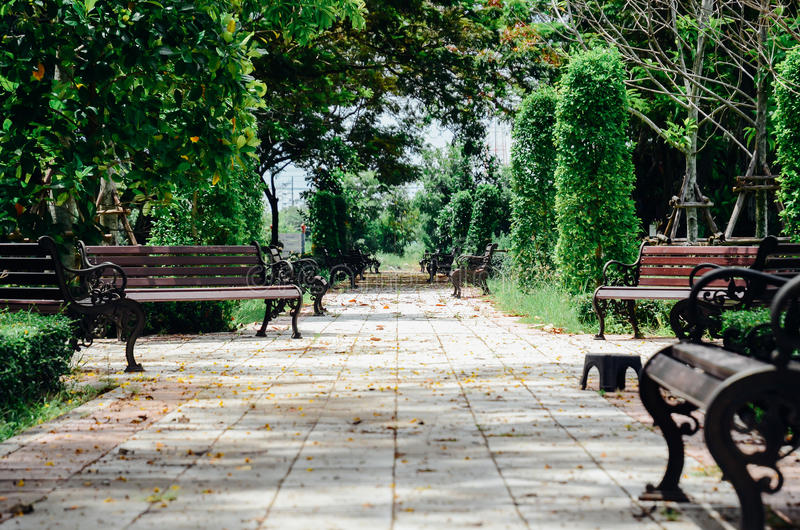 Banco en un parque verde fotografía de archivo