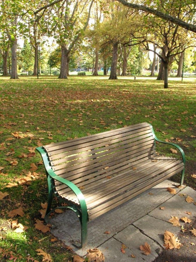 Banco - giardini di Carlton, Melbourne, Australia immagine stock libera da diritti