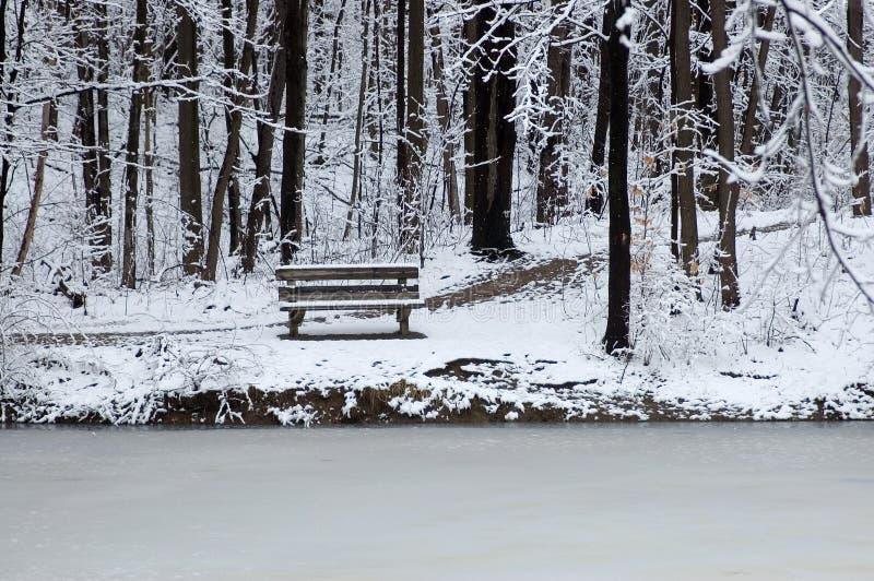 Banco na borda do lago fotos de stock