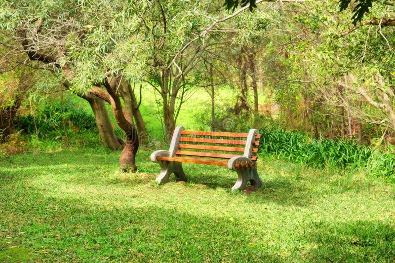 Download Banco na floresta imagem de stock. Imagem de jardim, parque - 29839177