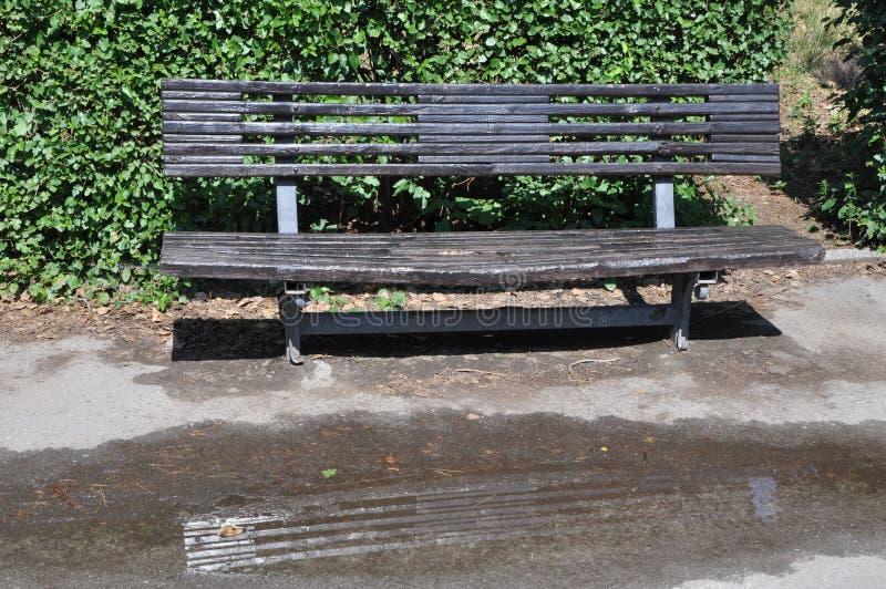 Banco negro en un parque después de la lluvia del verano fotos de archivo