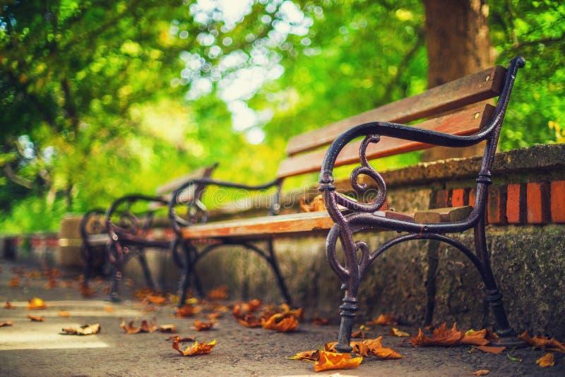 Banco nel parco di autunno Autumn Landscape immagini stock