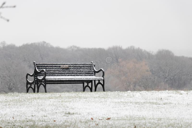 Banco nevado en un parque foto de archivo libre de regalías